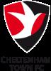 cheltenhamtownbadge