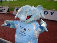 Coventry's Mascot