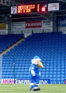 Haydon the Womble stands on the Proact Stadium pitch before the game