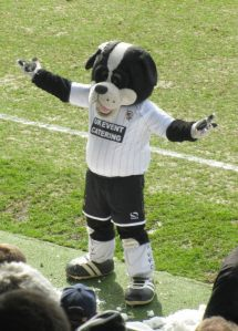 The Port Vale mascot waves at the home supporters