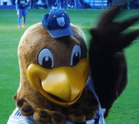 The West Brom mascot