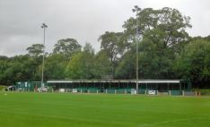 The main stand